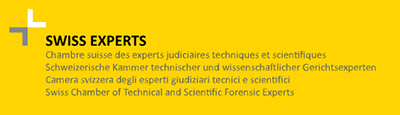 Swiss Engineering Expertenlammer