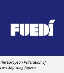Logo Fuedi